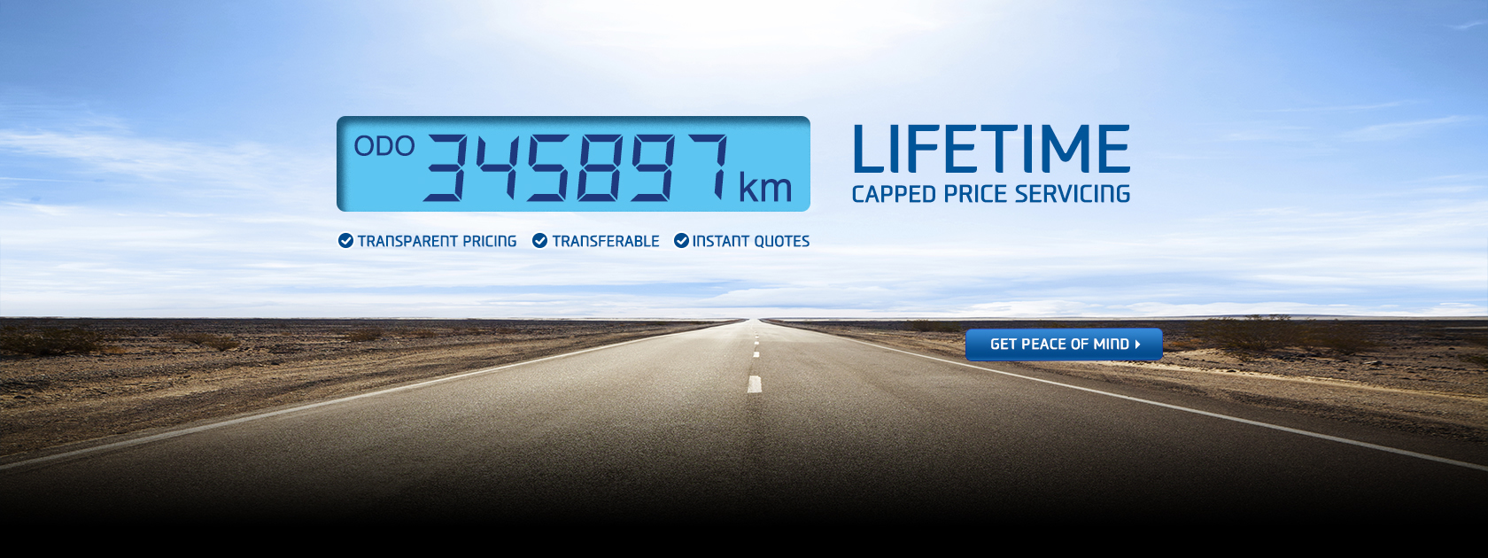 Lifetime Capped Price Servicing